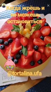 otzyv-tortalina200418
