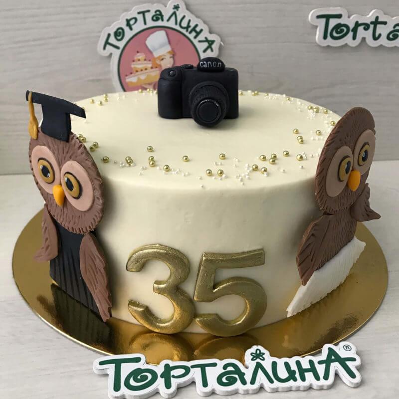 торт с аппликацией сов