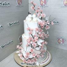 Розовая сакура. Авторский